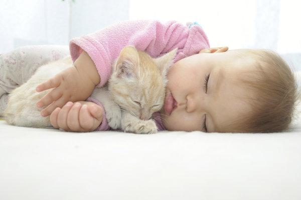 baby asleep with arms around sleeping kitten