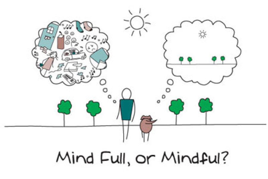 cartoon drawing of person walking dog towards 4 trees with thought bubble coming from person jammed with thoughts and thought bubble from dog with just 4 trees