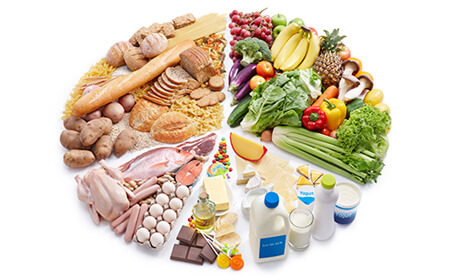 circle divided into sections made up of grains, fruit and veg, dairy, meat and fish and snacks in proportion of diet suggested